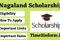 Nagaland Scholarship – Know all the Interesting Info